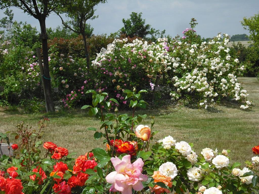 Jardin de la morandi re jardin en pays de la loire situ ch teau guibert en vend e 85 - Jardin romantique definition nantes ...