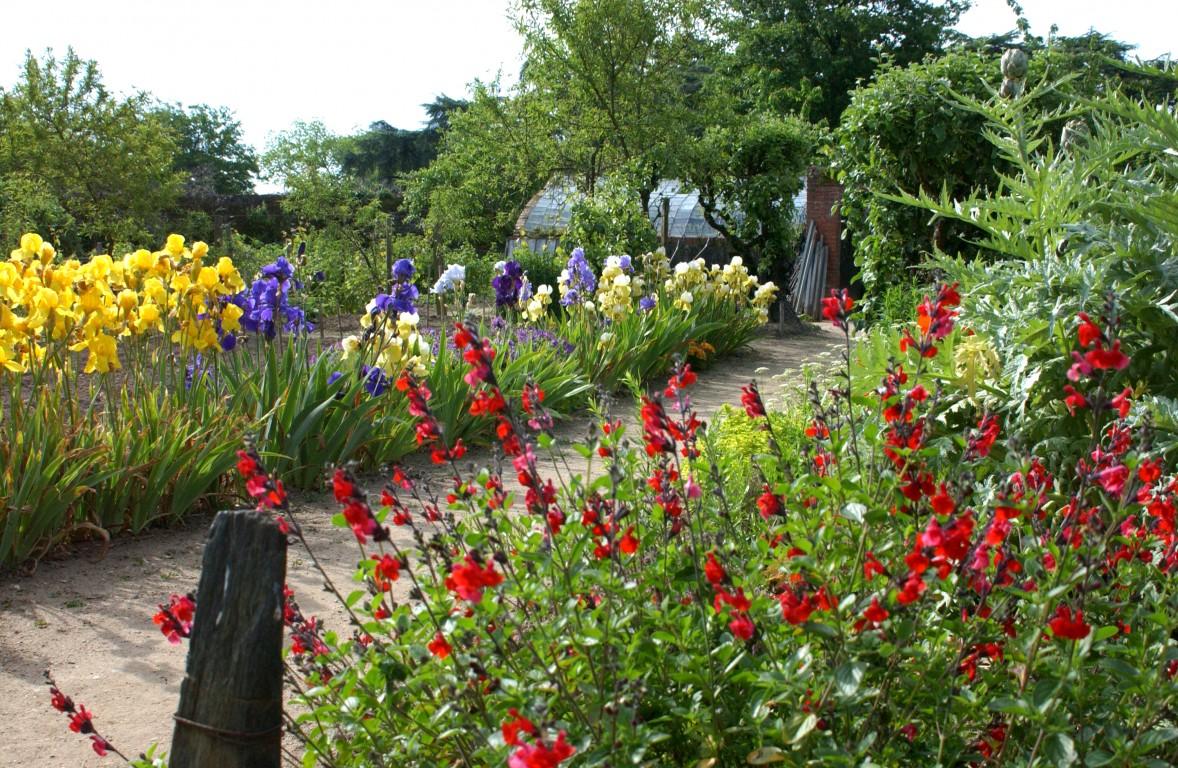parc et jardin du ch teau d 39 epir jardin en pays de la loire situ savenni res en maine et. Black Bedroom Furniture Sets. Home Design Ideas