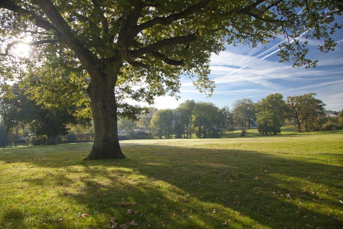 parc saint michel jardin en pays de la loire situ les essarts en vend e 85. Black Bedroom Furniture Sets. Home Design Ideas