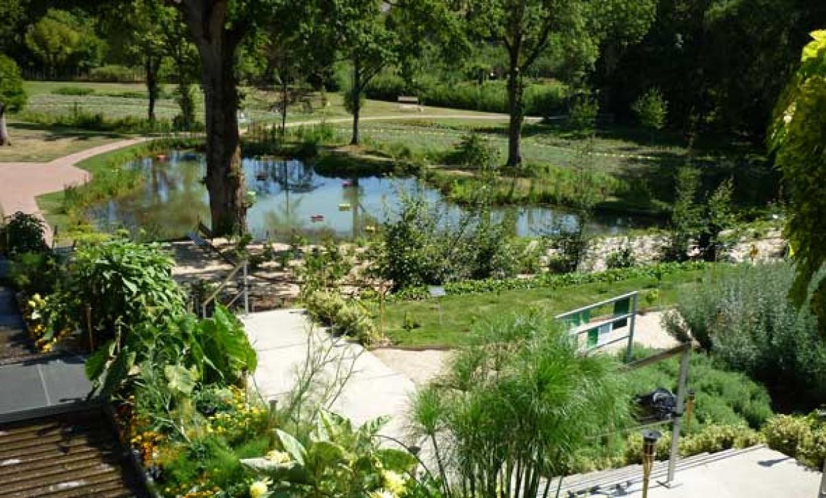 camifolia jardin en pays de la loire situ chemill melay en maine et loire 49. Black Bedroom Furniture Sets. Home Design Ideas