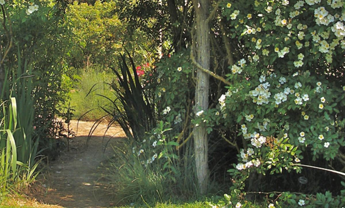 les chemins de la rose jardin en pays de la loire situ doue la fontaine en maine et loire 49. Black Bedroom Furniture Sets. Home Design Ideas