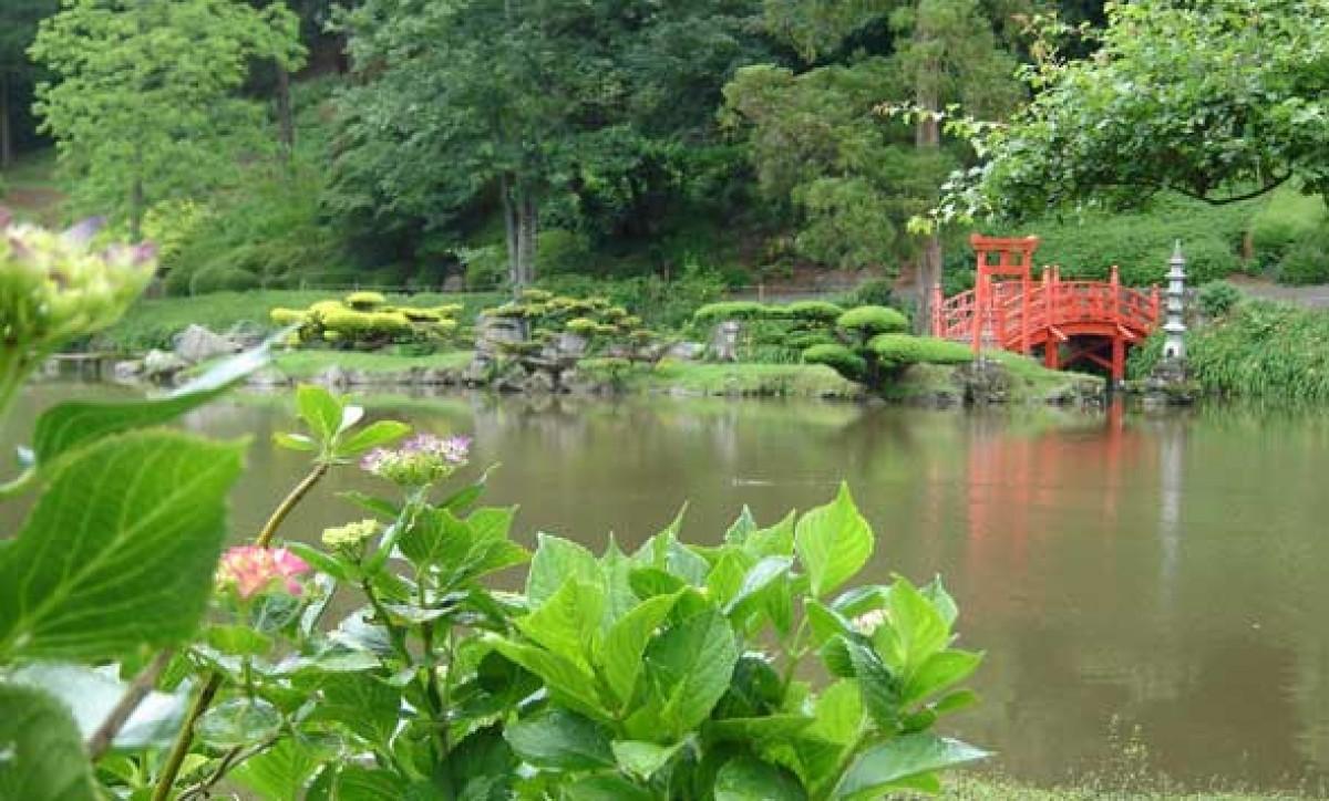 parc oriental jardin en pays de la loire situ maulevrier en maine et loire 49. Black Bedroom Furniture Sets. Home Design Ideas