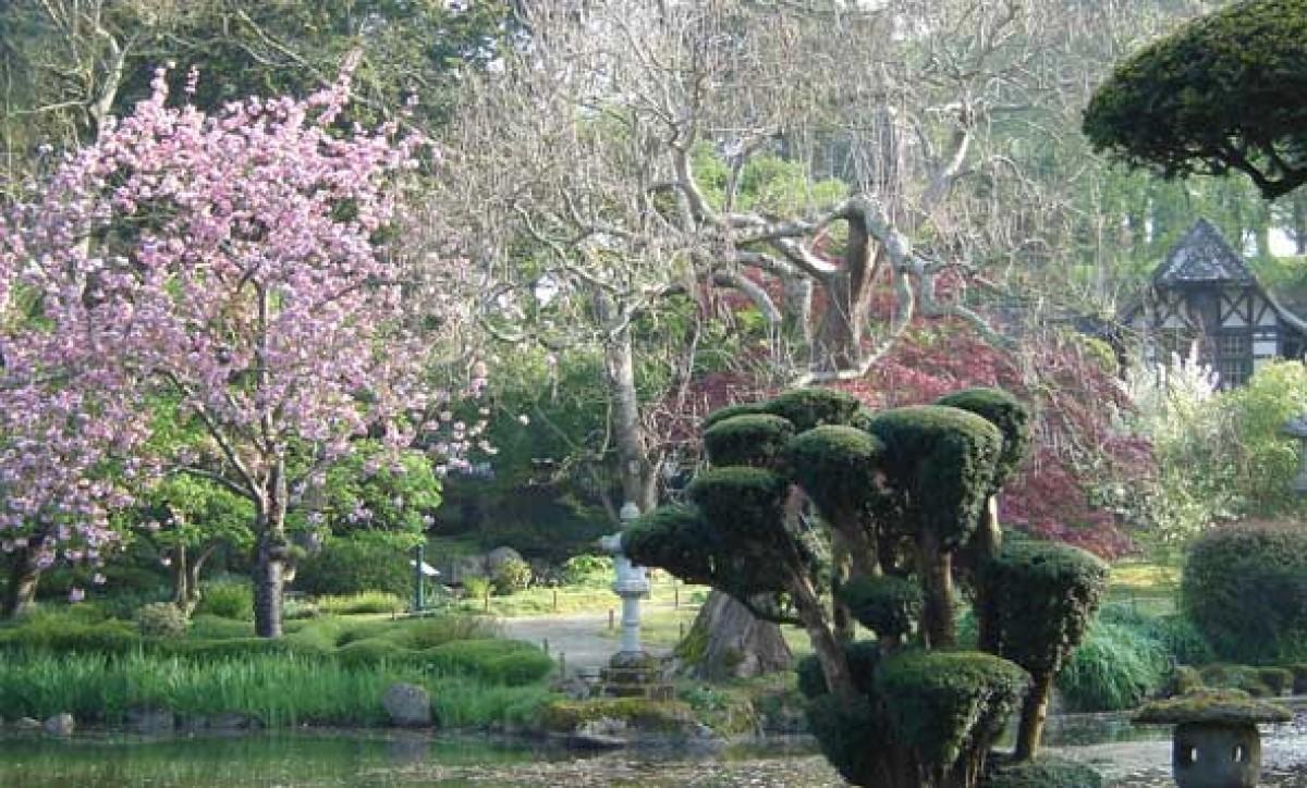Parc oriental jardin en pays de la loire situ for Le jardin oriental de maulevrier