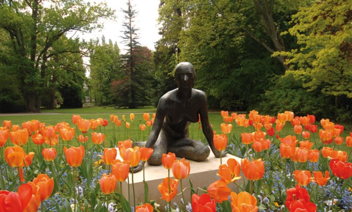 Jardin des plantes le mans for Plante ornementale des jardins